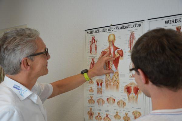Rückenschmerzen erklärt